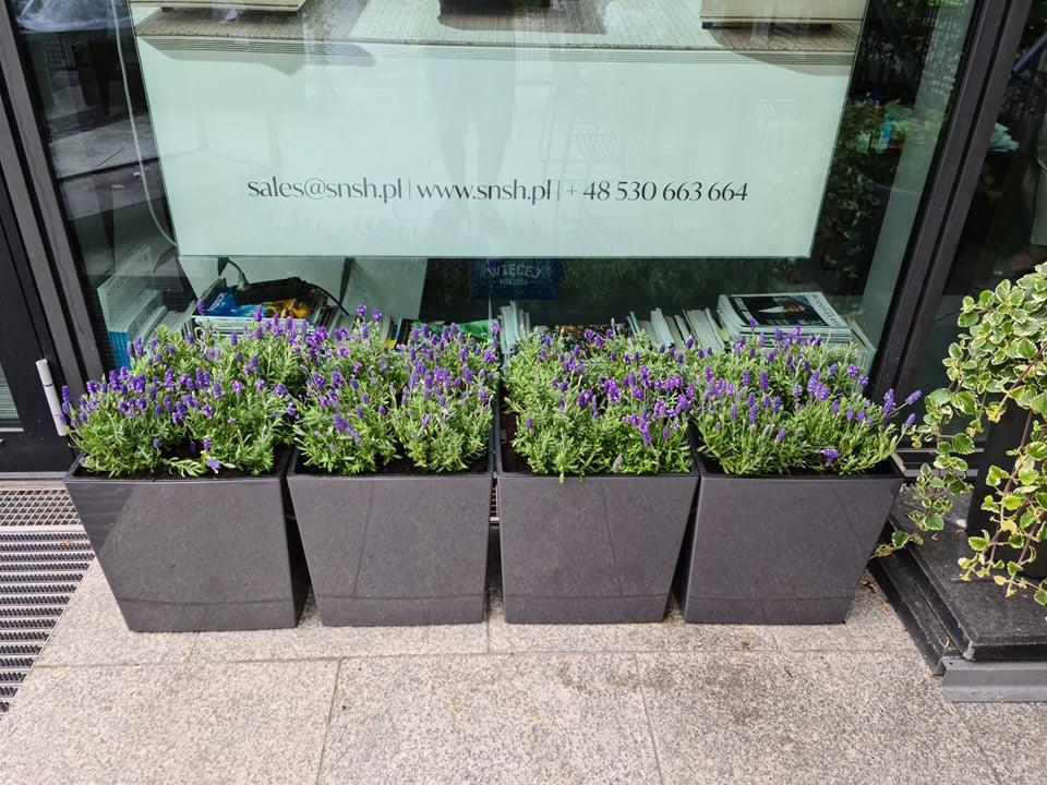serwis kwiatowy